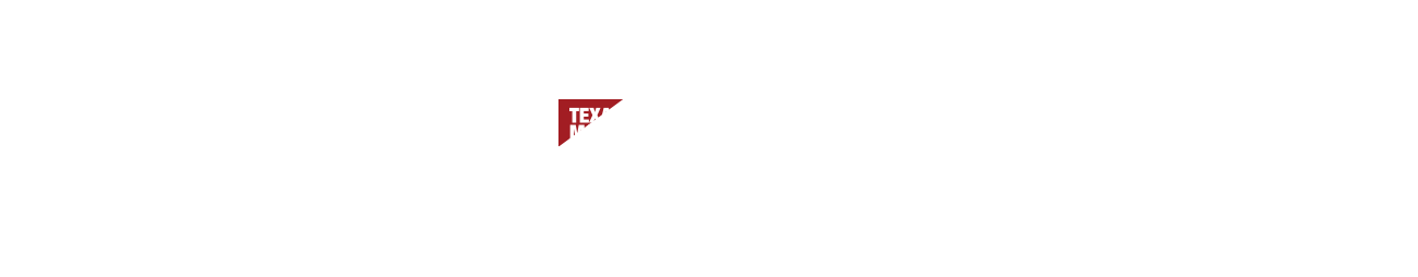 About CRH and Texas Materials Group